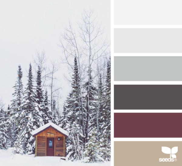 design seeds - choix de couleurs