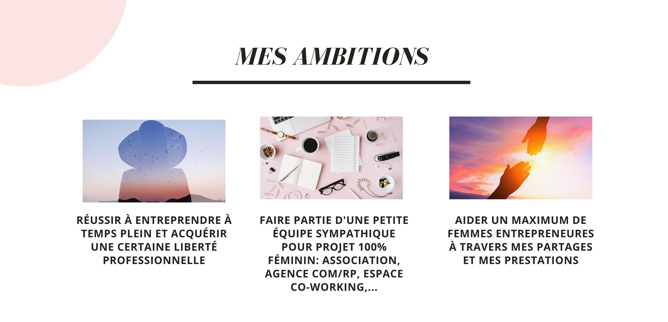 ambitions sana - sanita styling
