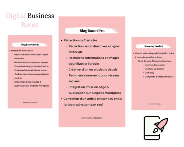 packs digital business boost - sanita styling